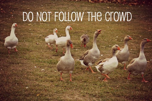 do not follow the crowd