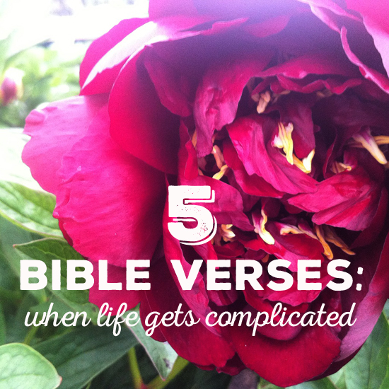5 bible verses to lift ou up when you are down