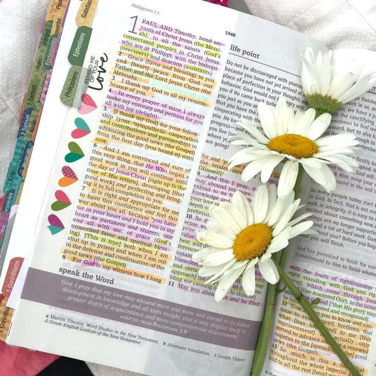 Understanding Philippians